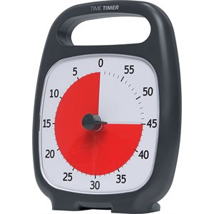 TIME TIMER 60 MIN.8PO GRIS