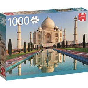 1000MCX TAJ MAHAL INDE