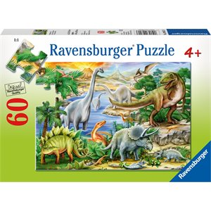 RAV09621